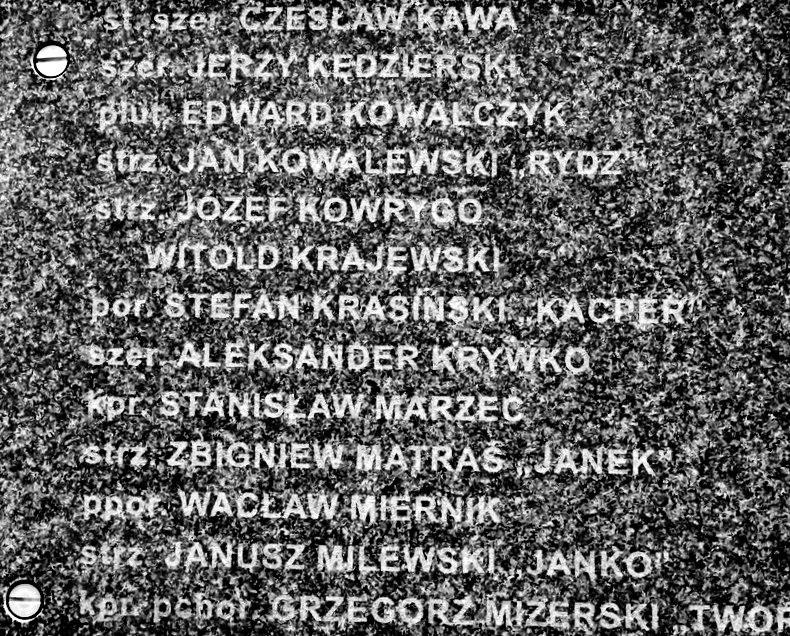 华沙起义博物馆的玫瑰园_图1-11