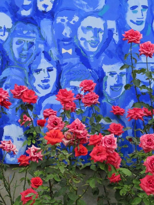 华沙起义博物馆的玫瑰园_图1-13