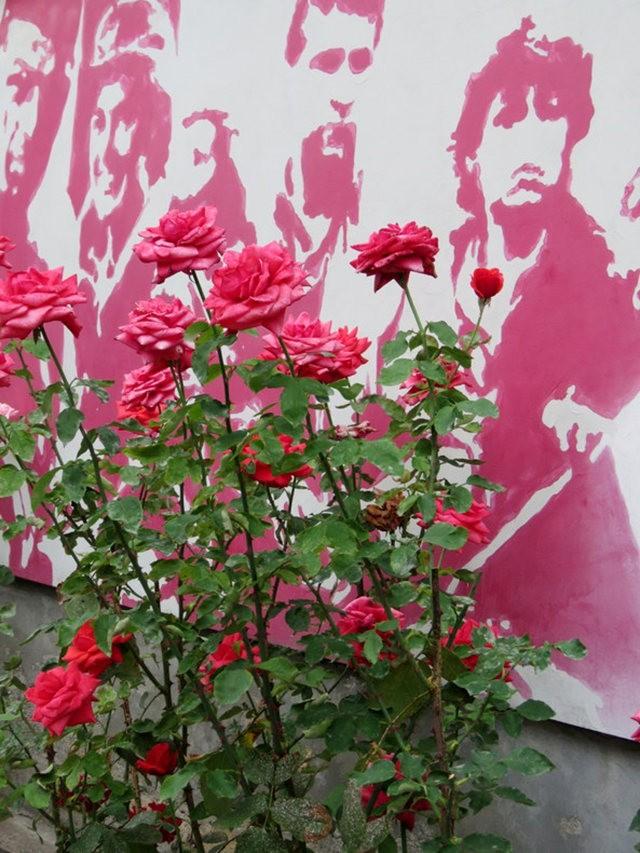 华沙起义博物馆的玫瑰园_图1-19
