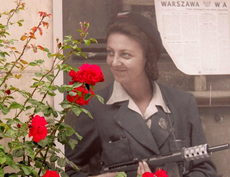 华沙起义博物馆的玫瑰园_图1-22