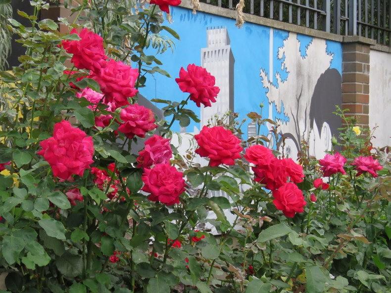 华沙起义博物馆的玫瑰园_图1-27