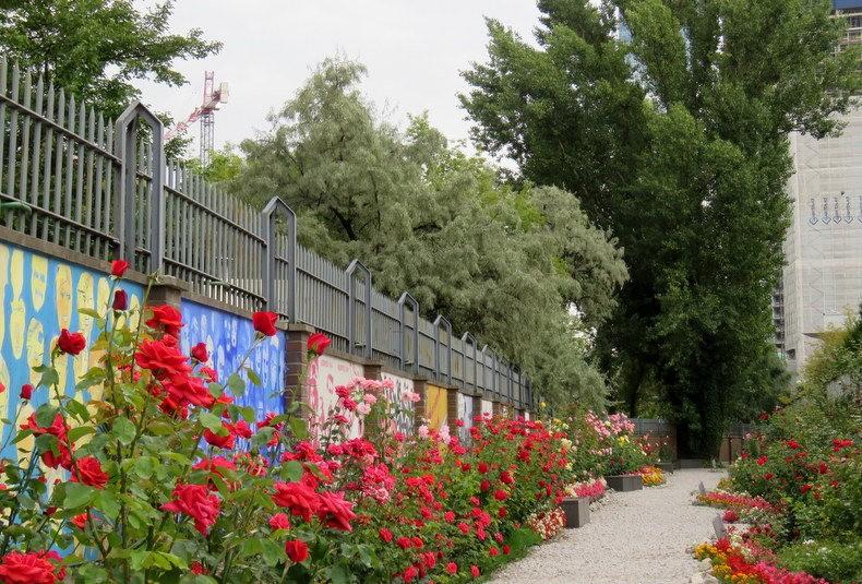 华沙起义博物馆的玫瑰园_图1-30