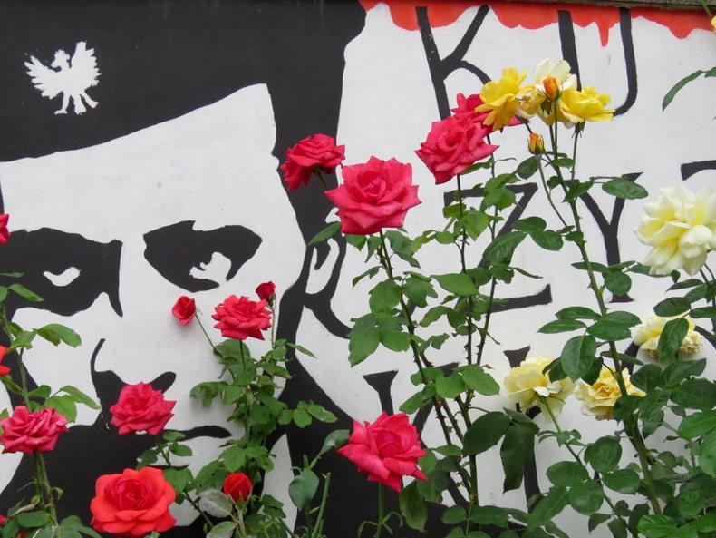 华沙起义博物馆的玫瑰园_图1-31