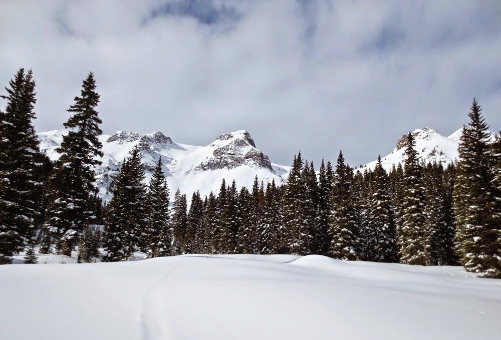 科罗拉多的林海雪原_图1-3
