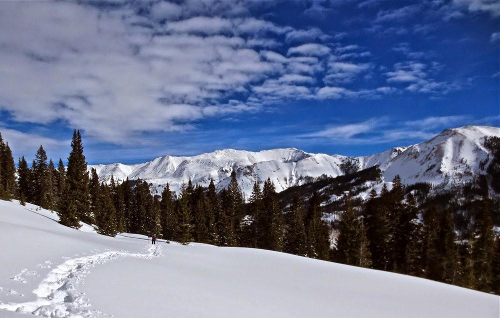 科罗拉多的林海雪原_图1-10