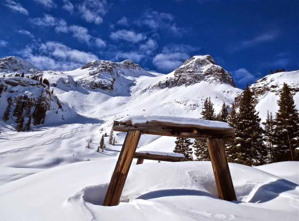 科罗拉多的林海雪原_图1-16