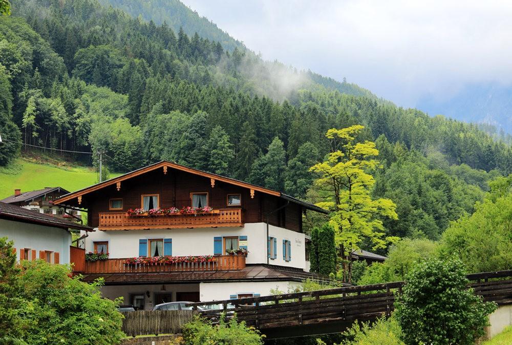 德国阿尔卑斯山的第一天_图1-3