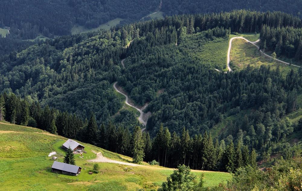 德国阿尔卑斯山的第一天_图1-23