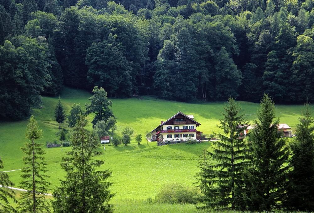 德国阿尔卑斯山的第一天_图1-24