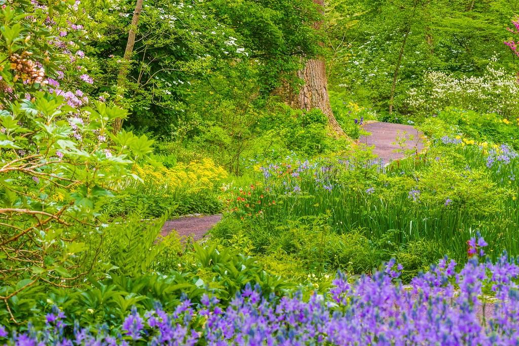 Chanticleer花园,闻着花香_图1-24