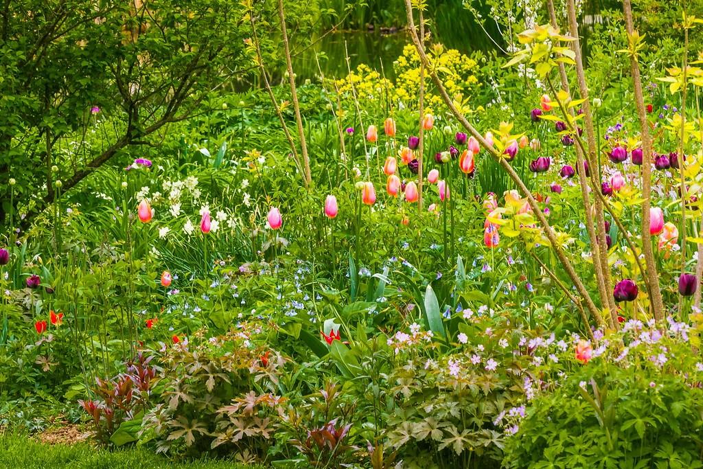 Chanticleer花园,闻着花香_图1-18