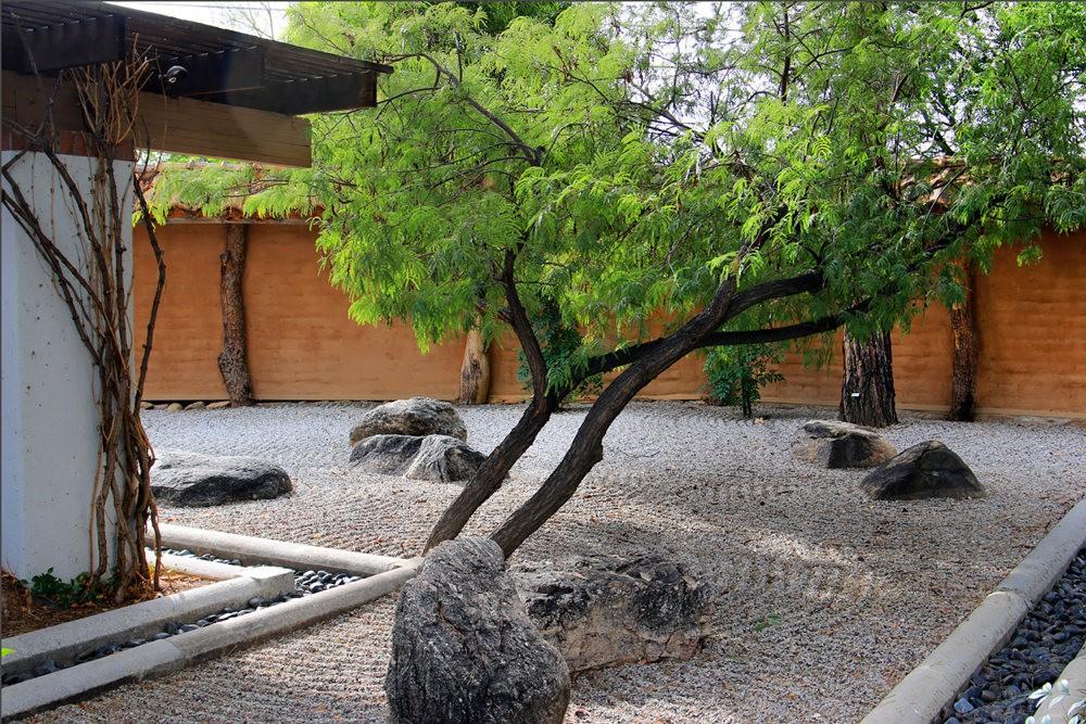 图森植物园的新形象_图1-31