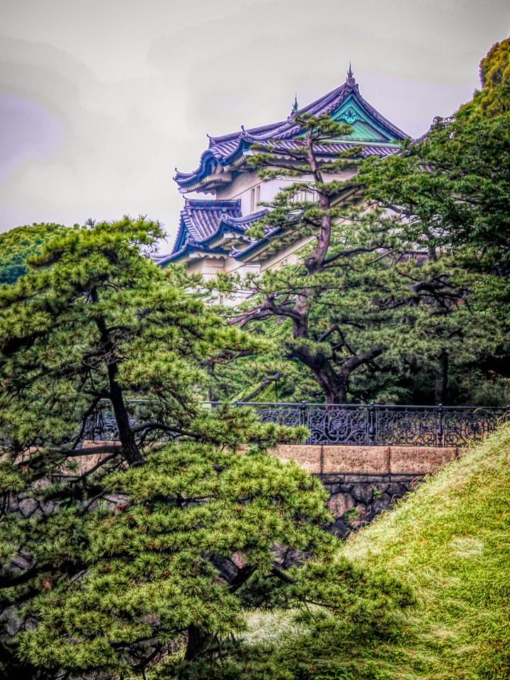 日本印象,民情民调_图1-15