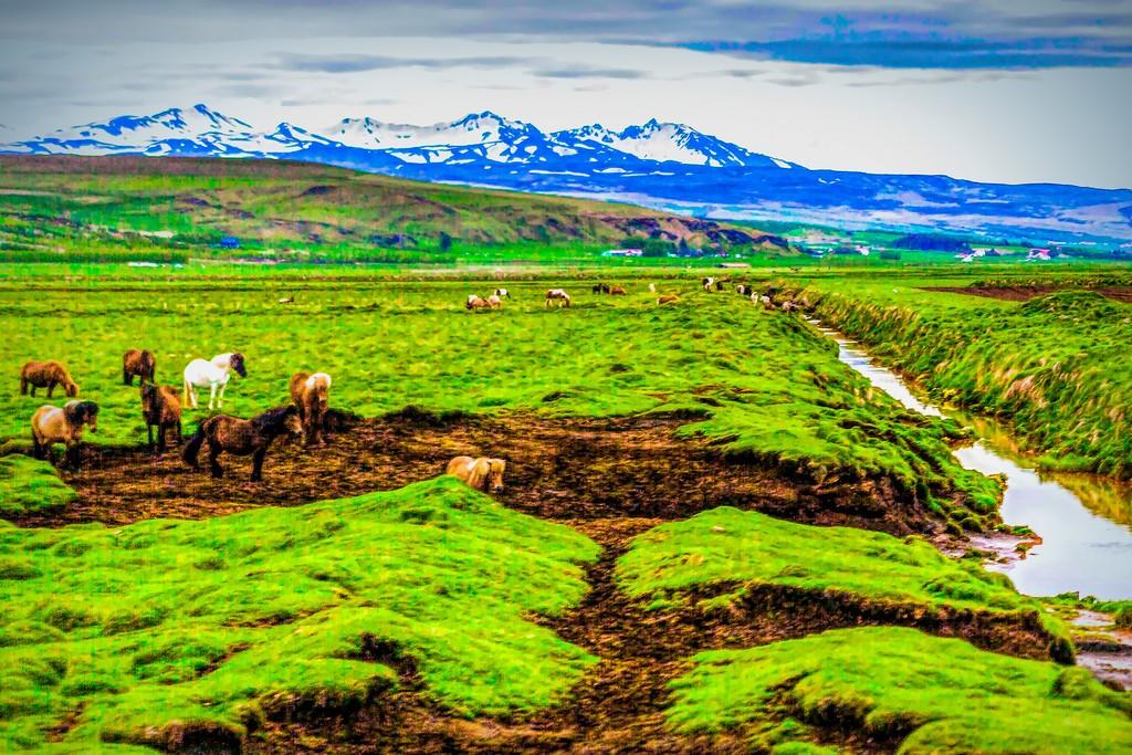冰岛风采,大地血脉_图1-9
