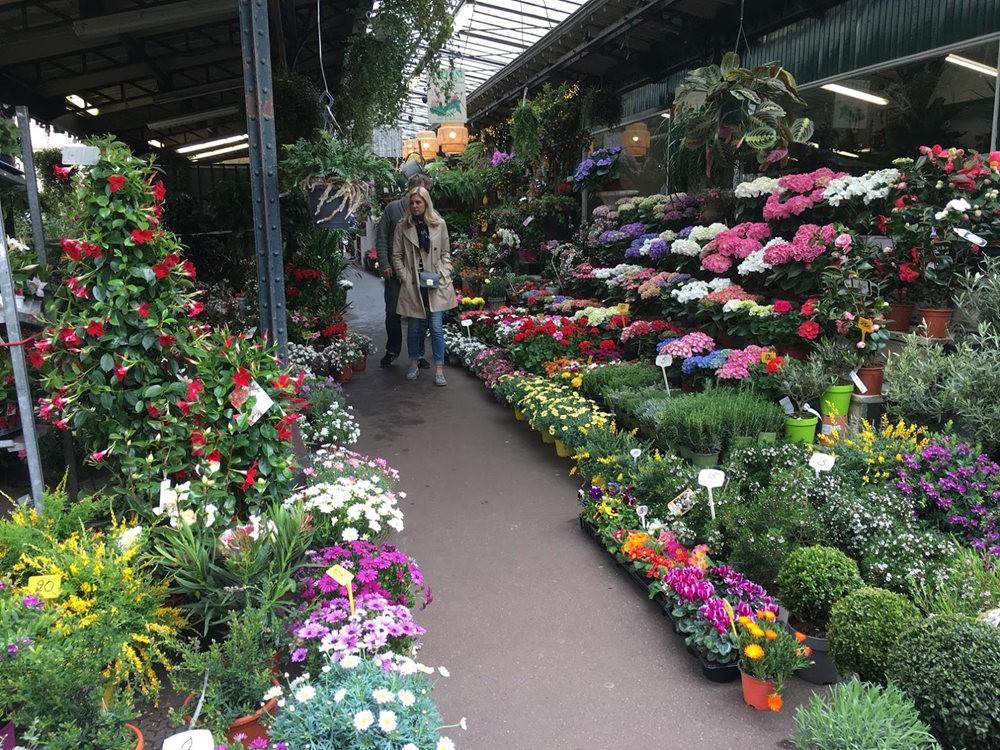 在巴黎见到的卖花市集_图1-2