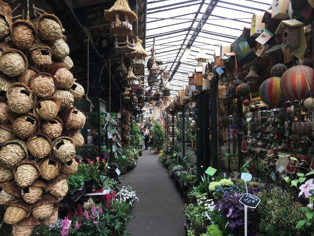 在巴黎见到的卖花市集_图1-4
