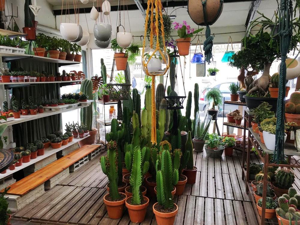 在巴黎见到的卖花市集_图1-9