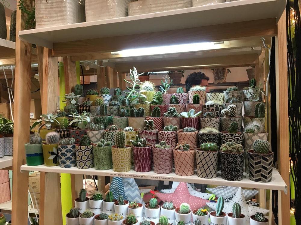 在巴黎见到的卖花市集_图1-12