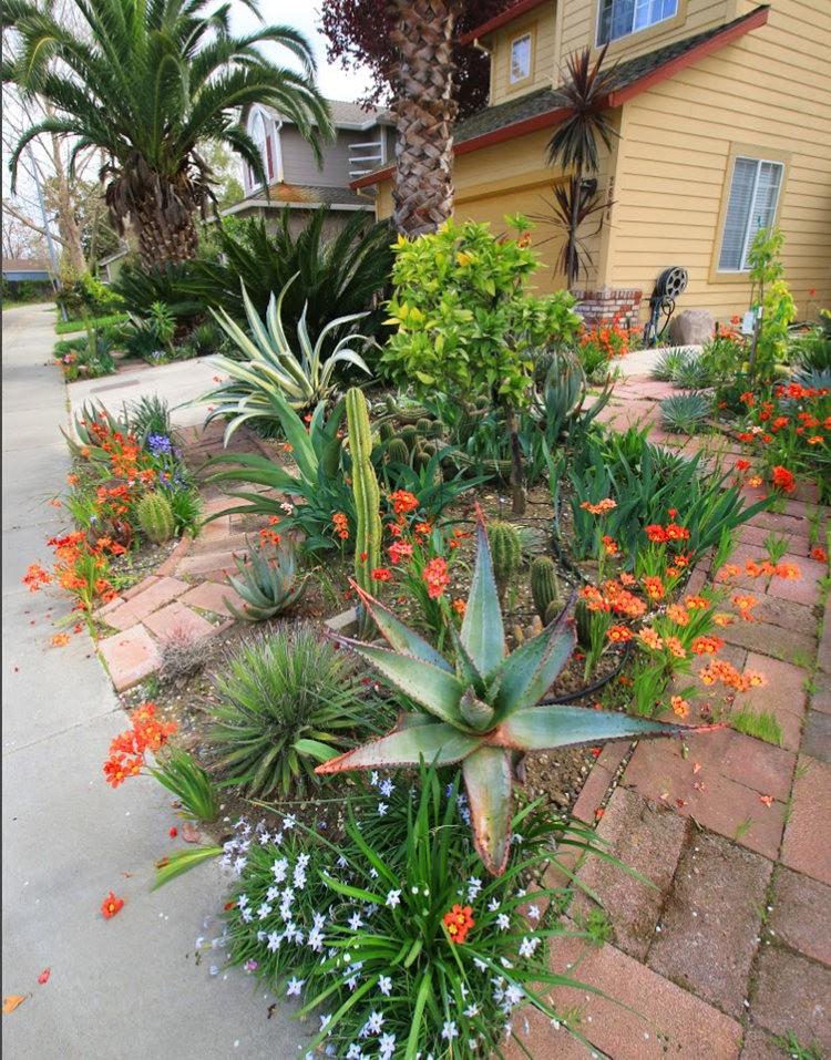 玛塔家庭旅馆花园放大版_图1-3
