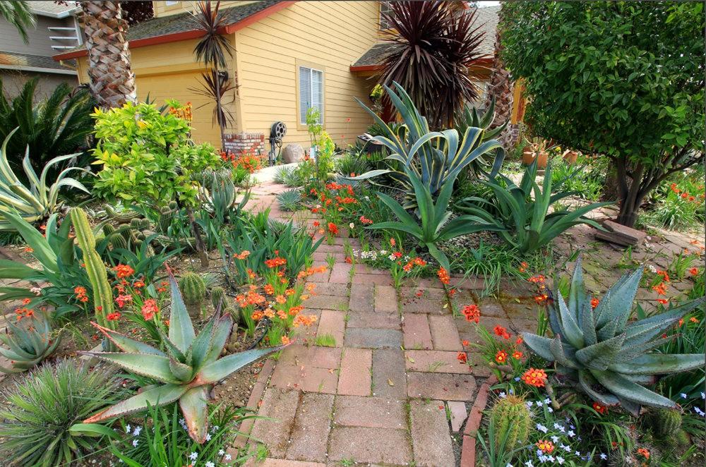 玛塔家庭旅馆花园放大版_图1-4