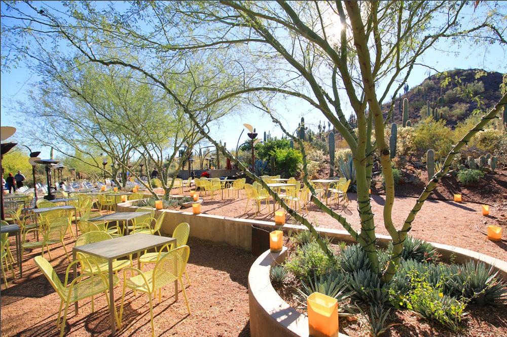 凤凰城沙漠植物园---2_图1-14