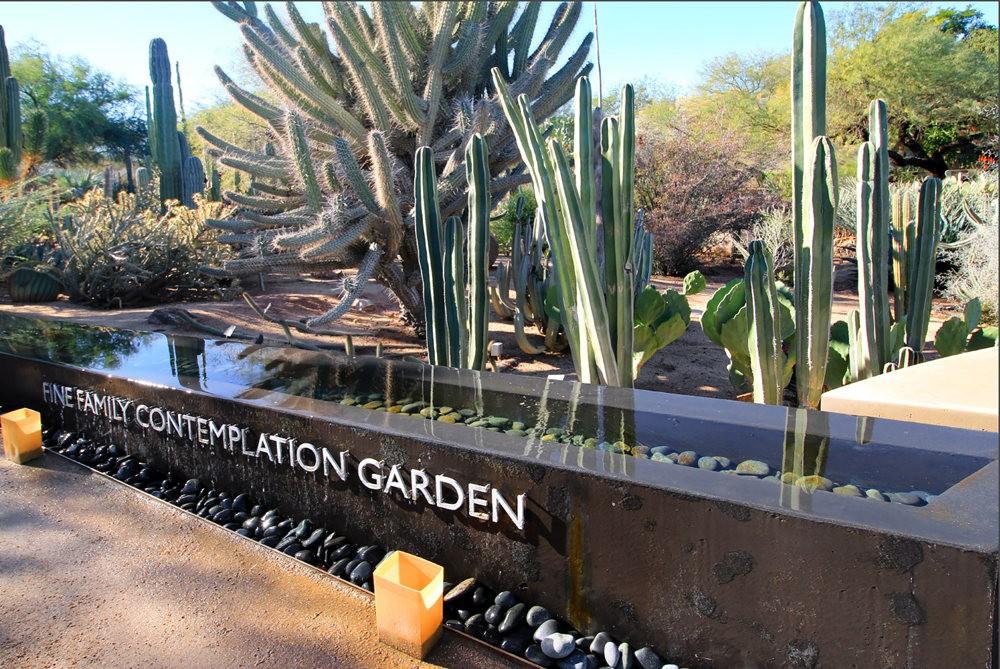凤凰城沙漠植物园---2_图1-16
