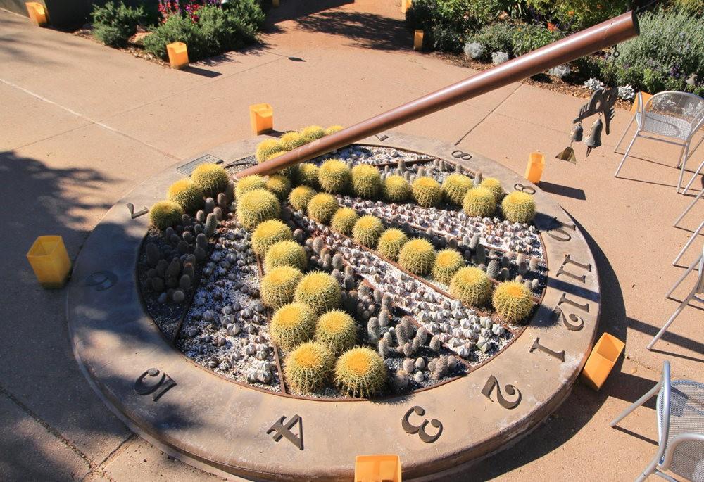凤凰城沙漠植物园---2_图1-21