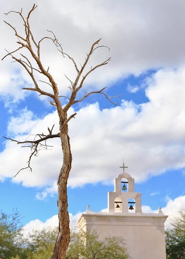 圣奥古斯丁大教堂_图1-12