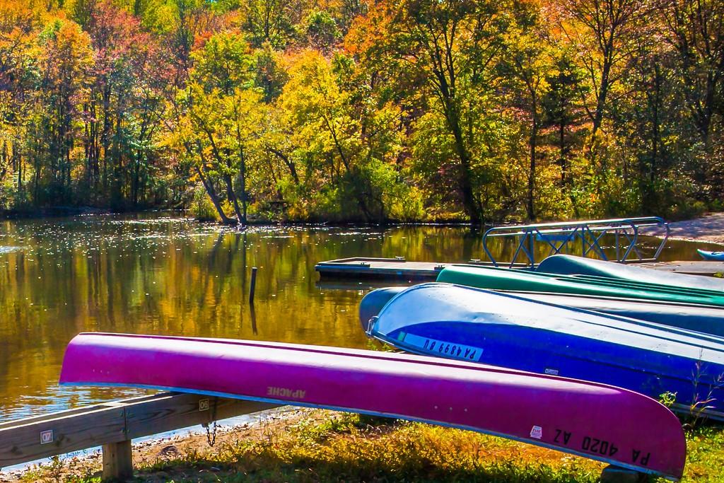 宾州 French Creek State Park,岸边小船_图1-7