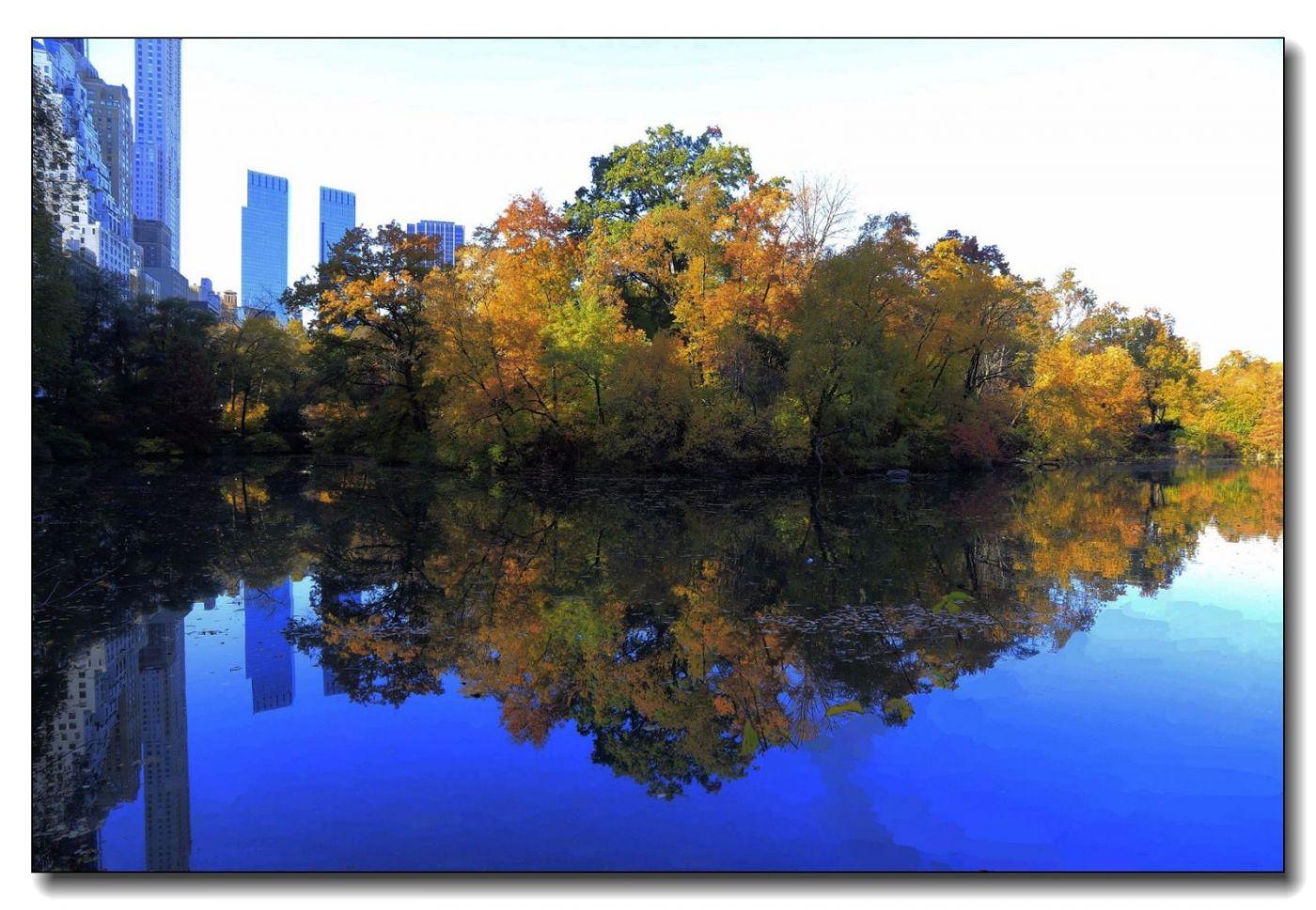 深秋色彩-中央公园1_图1-2