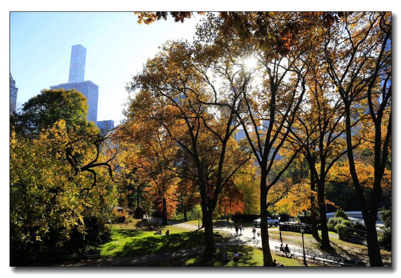深秋色彩-中央公园1_图1-5