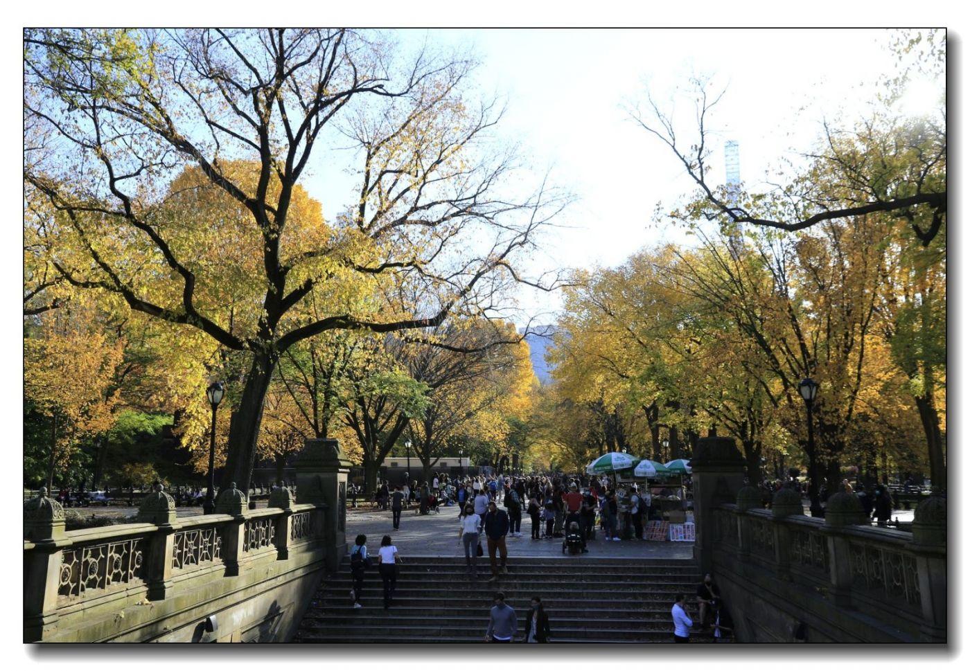 深秋色彩-中央公园1_图1-20