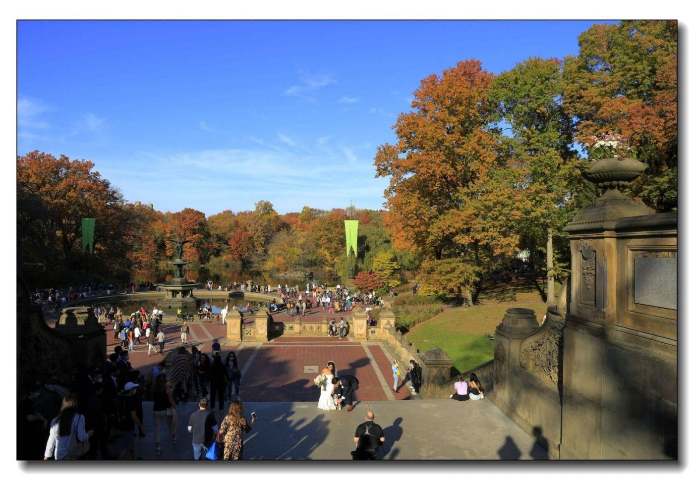深秋色彩-中央公园1_图1-21