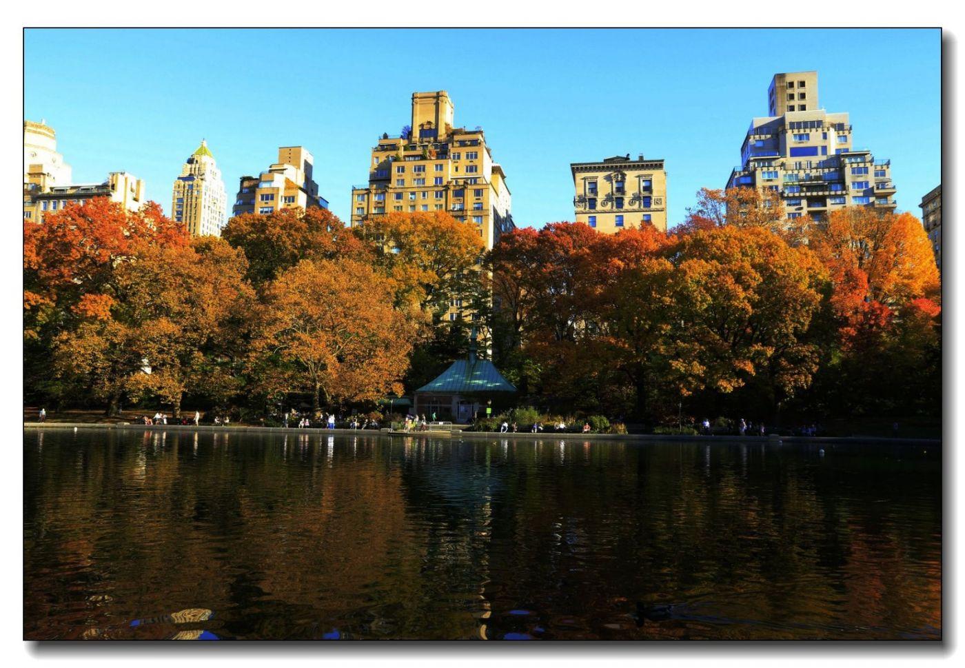 深秋色彩-中央公园2_图1-1