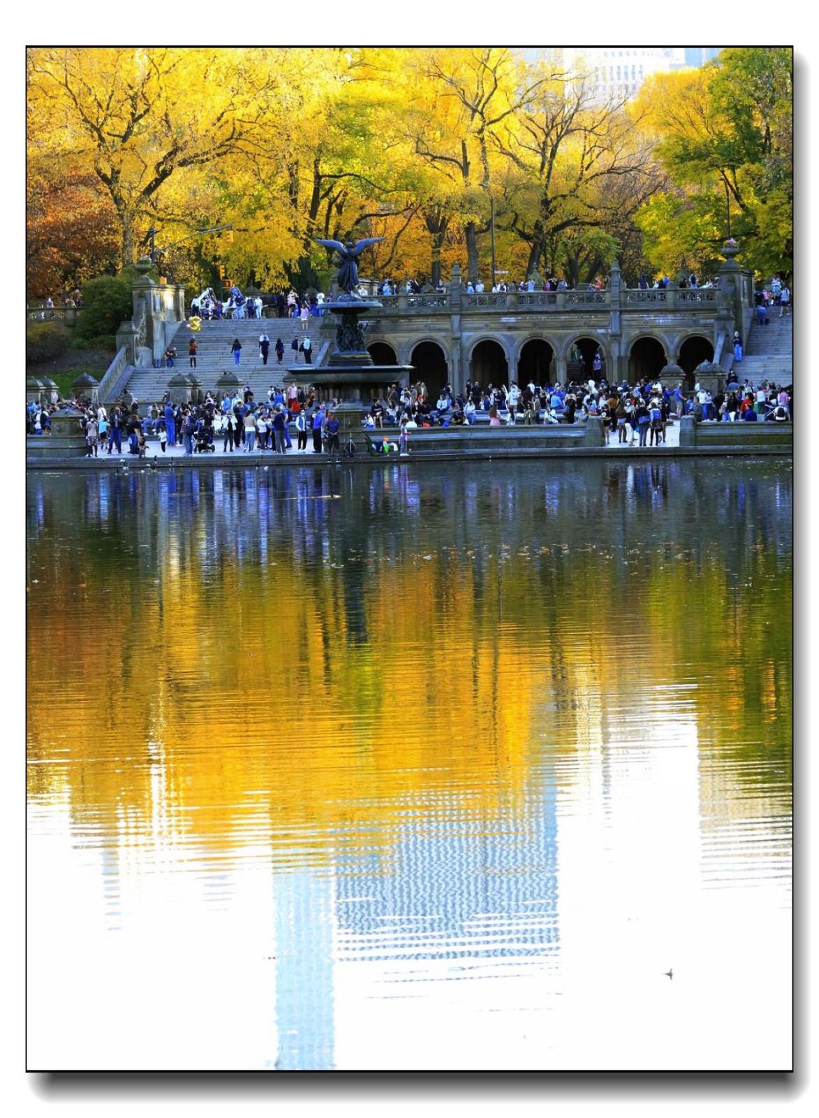 深秋色彩-中央公园2_图1-5