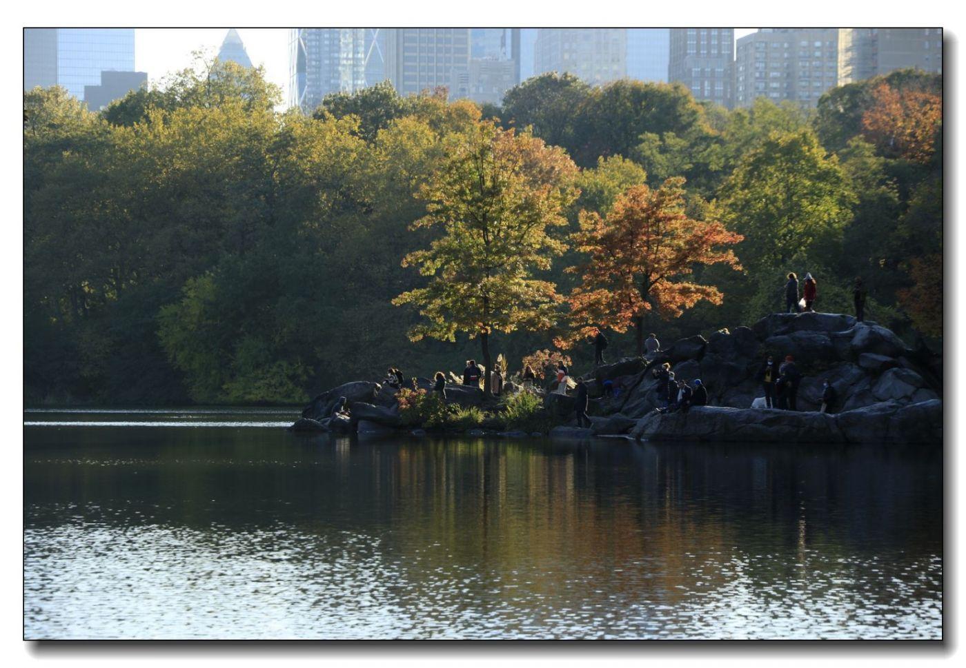 深秋色彩-中央公园2_图1-12
