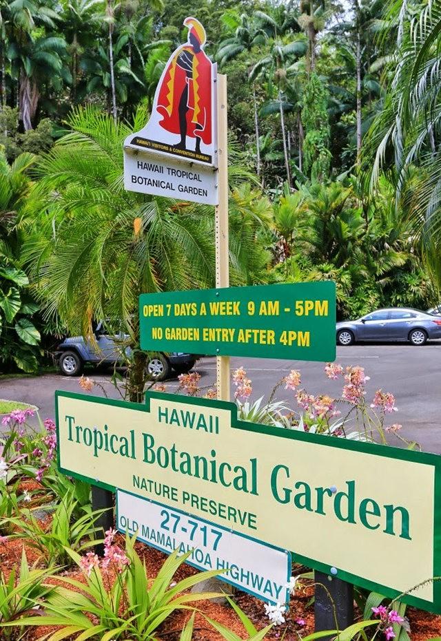 参观夏威夷热带生物保护区花园_图1-2