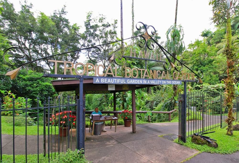 参观夏威夷热带生物保护区花园_图1-3