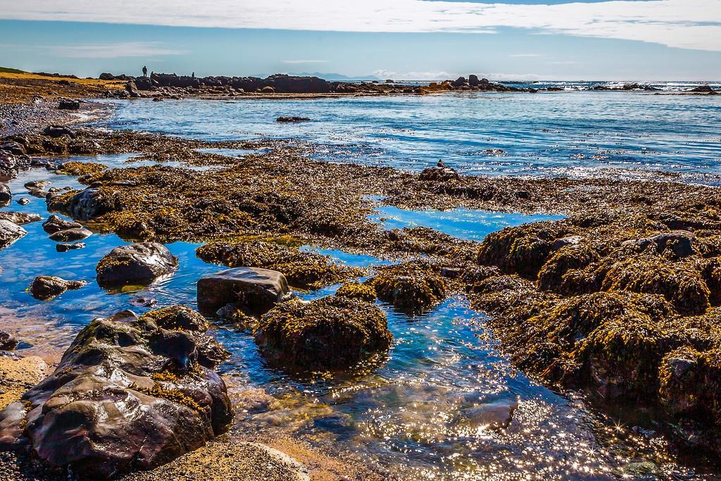 冰岛风采,礁石海水还有雪山_图1-27