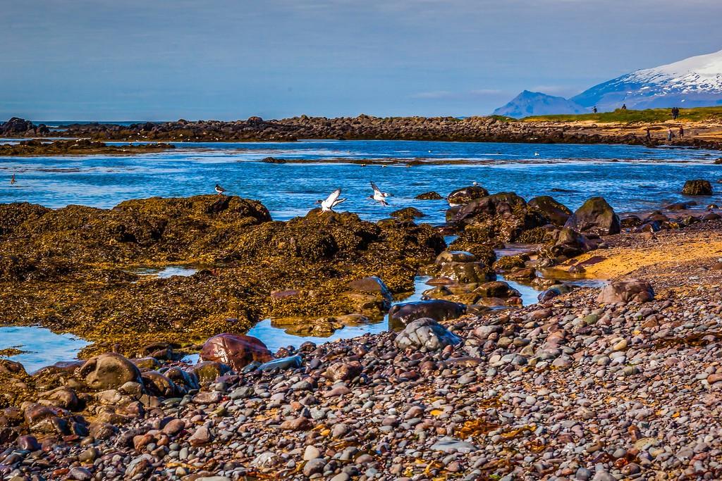 冰岛风采,礁石海水还有雪山_图1-22