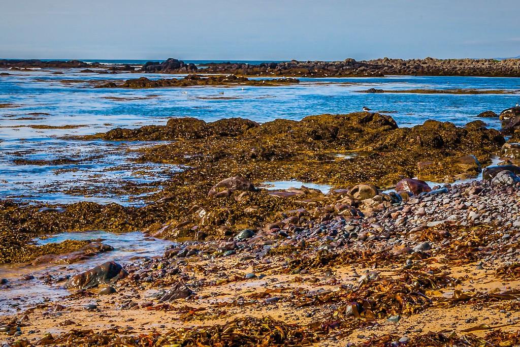 冰岛风采,礁石海水还有雪山_图1-19