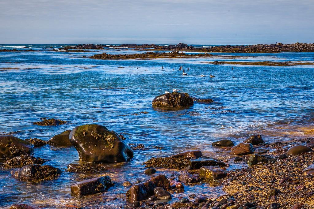 冰岛风采,礁石海水还有雪山_图1-14