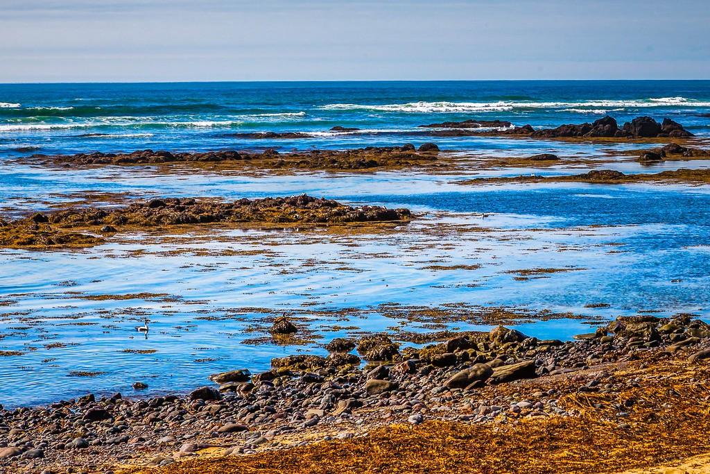 冰岛风采,礁石海水还有雪山_图1-4