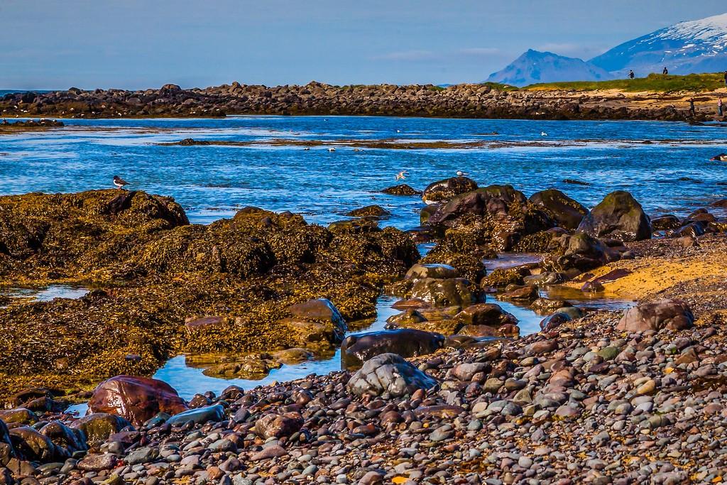 冰岛风采,礁石海水还有雪山_图1-12