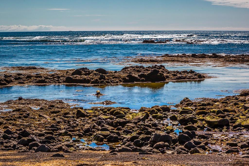 冰岛风采,礁石海水还有雪山_图1-11