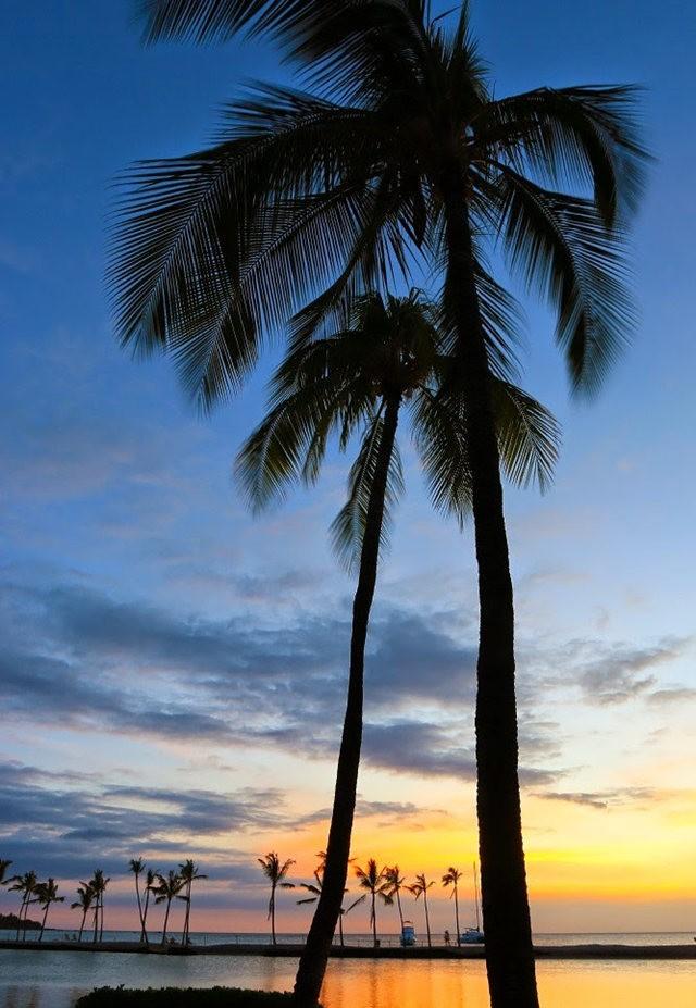 夏威夷的日落_图1-9