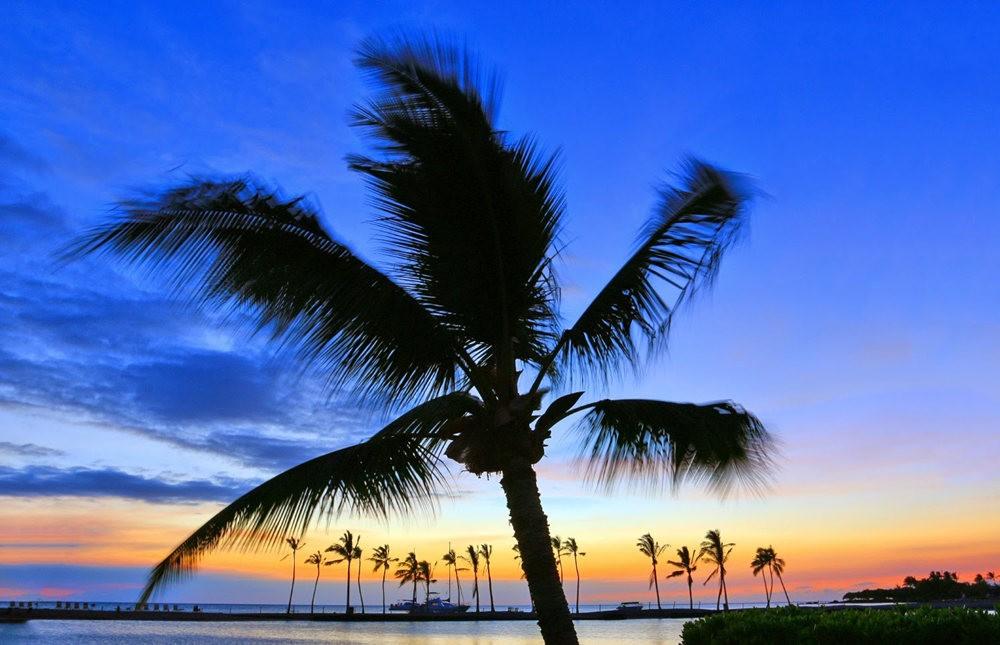 夏威夷的日落_图1-10