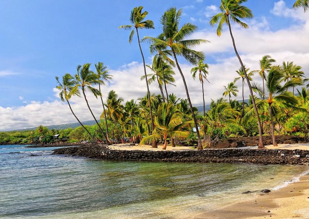 在夏威夷大岛度假_图1-2