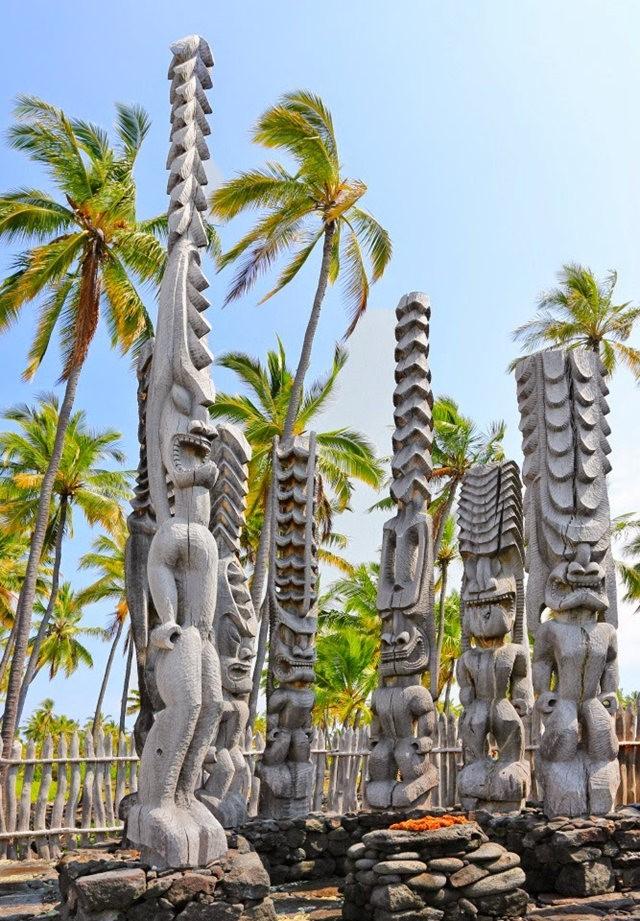 在夏威夷大岛度假_图1-6