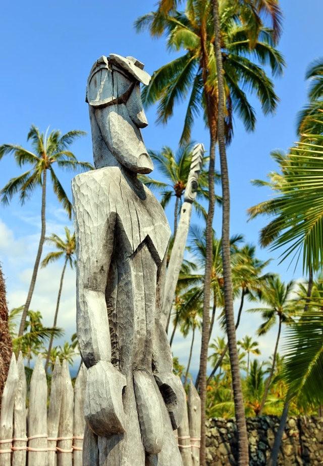 在夏威夷大岛度假_图1-7